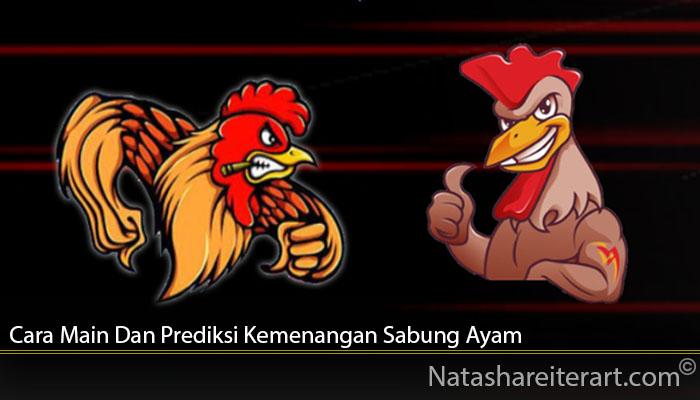 Cara Main Dan Prediksi Kemenangan Sabung Ayam